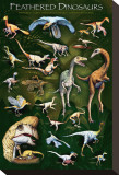 Feathered Dinosaurs I