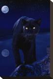 Panthère noir au clair de lune Tableau sur toile