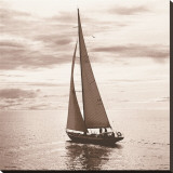 Sailing V