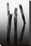 Four Pier Pilings