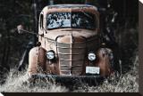 Old Truck in a Field