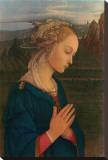 Vergine in Adorazione  c1406-1469