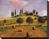 Tuscan Hillside