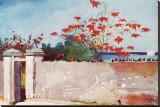 Wall  Nassau  c1898