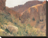 Ain Djiddy Gorge near the Dead Sea