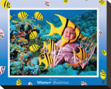 Water Babies  Yellow Fish