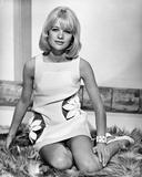 Judy Geeson - Hammerhead