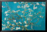 Almond Blossom San Ramy  1890
