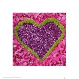 Madalenes Hearts Pink