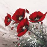 Bouquet de Coquelicots II