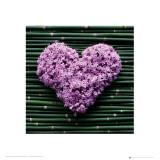 Madalenes Hearts Bamboo