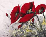 Bouquet de Coquelicots IV