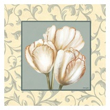 Tulips With Scroll