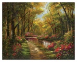Enchanted Creek I