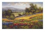 Campo di Fiore I