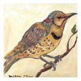 Bird IV