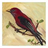 Bird VIII
