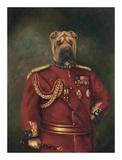 Major General Woof