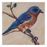 Bird XII