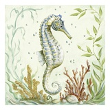 Pacific Seahorse