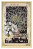 Herbes De Jardin