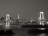 Rainbow Bridge and Tokyo Bay from Odaiba  Tokyo  Japan