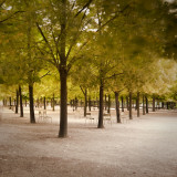 Jardin Du Luxembourg  Latin Quarter  Paris  France