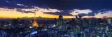 Skyline from Shiodome  Tokyo  Japan
