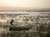 Ethiopia  Lake Awassa; a Young Boy Punts a Traditional Reed Tankwa Through the Reeds