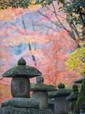 Asia  Japan; Kyoto  Sagano  Nison in (Nisonin) Temple