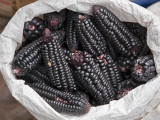 Peru; Black Maize Cobs  or Corn  for Sale at Pisac Market During the Weekly Sunday Market