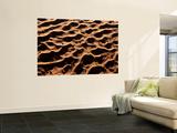 Aerial View over Sand Dunes  Namib Desert  Namibia