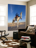 Tunisia  Sahara Desert  Douz  Great Dune  Rider and Camel