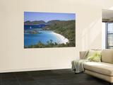 Caribbean  Us Virgin Islands  St; John  Virgin Islands National Park  Trunk Bay