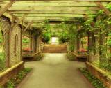 Opulent Garden IV