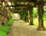 Opulent Garden II