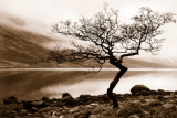 Loch Etive