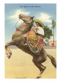 Queen of the Rancho  Charra on Horse