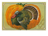 Thanksgiving Greetings  Turkey  Pumpkin