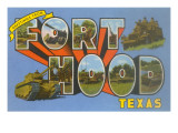 Greetings from Fort Hood  Texas