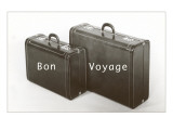 Suitcases  Bon Voyage