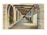 Covered Archway  Alamo  San Antonio  Texas