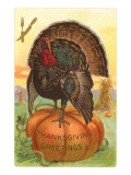 Greetings  Turkey on Pumpkin