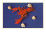 Lobster and Shells
