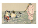Stork Lecturing Seals