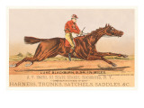 Advertisement for Tack  Steeplechase
