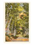 Ames Hill  Brattleboro  Vermont
