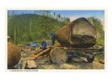 Logging Scene  Washington