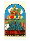 Columbia Basin Decal
