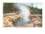 Oblong Geyser  Yellowstone National Park